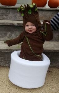 This is Groot when he appears in the end of the movie. Still, this costume is adorable.