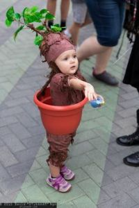 Sure it might be dangerous to hear its cries. But this is the most adorable little mandrake I've ever seen.