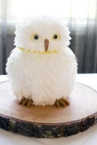 Yes, this is a Hedwig cake. And yes, it's adorable and lovely as you can see.