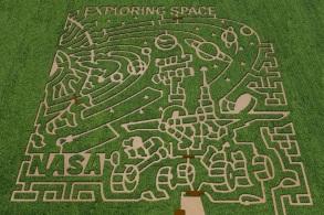 Corn-maze-1
