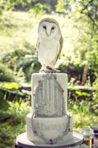 Like Snape's love for Lily as this cake commemorates. Still, I like the owl on it since it almost looks real.