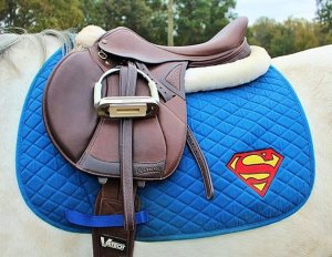 Well, I included a horse dressed as Superman in the DC costume post. So it's only fair.