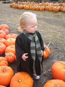 Okay, Draco was a brat in the books and the movies. However, this costume is quite cute if you ask me.