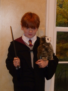 Because we all know what happened to his rat in Book 3. Turned out it wasn't really one to begin with.