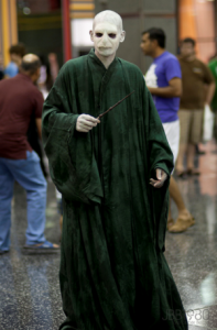 My guess is that the Dark Lord is looking for Harry so he could kill him. He knows he's seen him somewhere.