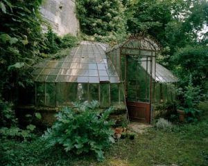 Yet another Victorian greenhouse that's abandoned. But at least this one has plants in them.