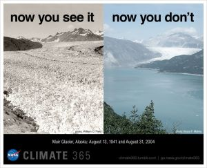 These are a pictures of Muir Glacier in Alaska. One is from 1941. The other from 2004. Guess what happened during these years.