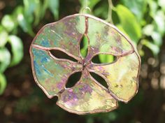 Not sure how sand dollars come into existence. But you have to like this one of stained glass.