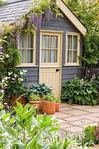 Not sure about the plants growing on the shed. But it sure looks pretty. Like the door and windows.