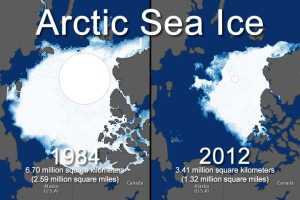 Over the last 30 years, the Arctic ice has been melting at an accelerated rate. And it makes the ice less likely to survive the next year. This spells bad news for polar bears.