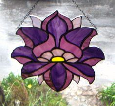 I really like this flower for it's petals and design. Also, because it's purple.