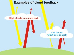 While it's somehow believed that negative cloud feedback could reduce climate change, most studies have ruled it out since clouds don't provide much negative feedback at all. And it's believed that clouds might cause the planet to warm even further.