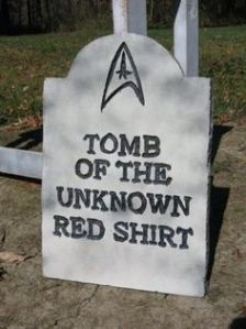 Here lies a Red Shirt known only to God. Because if we knew who he was, he wouldn't have been killed on that planet in the first place.