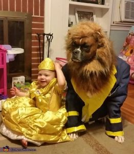 That's just so cute. Here they have a little baby as Belle. And a boxer as the Beast. The dog doesn't seem pleased.