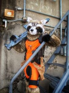 And it seems that he's brought the big guns. Then again, as a raccoon, he doesn't expect to live long anyway.