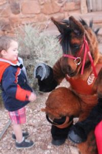 He even has his hooves shoed and is well bridled. Plus, he's great with kids.