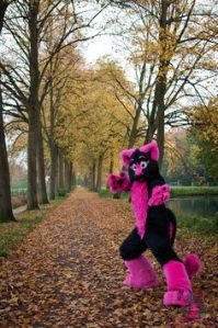 As you can see, furry costumes don't always have to be in natural colors. This one is in pink and black. And is sure to stand out 24/7.