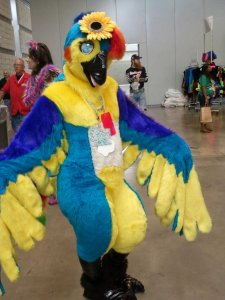 And what a colorful bird she is. Yet, I bet the male counterpart of her species is even more fantastic looking.