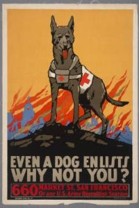 Man, they really tried to put men on guilt trips during WWI. Yet, here's scruffy in his Red Cross glory. One dog in that war was even made a sergeant (no joke).