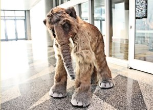 Yes, that's supposed to be a mastodon which is now extinct. But this costume is pretty cool.