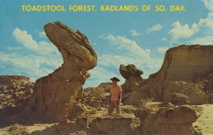 Though the name is Toadstool Forest, it's not a forest nor does anything there resemble a toadstool. Yet, that one rock does resemble a giant rabbit.
