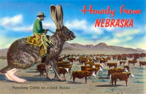 One of the reasons why cowboys ride on jackrabbits in Nebraska was because the state was once the sight of a large Native American nuclear power plant which suffered a major meltdown. That's why the rabbits are so huge out there.