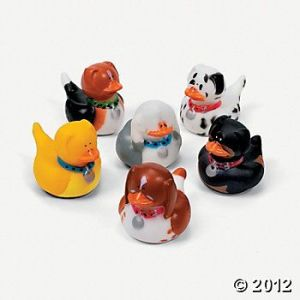 Don't ask me why they have dog rubber ducks. I'm not the one who came up with that. Seriously, I'm just as stumped as you are.