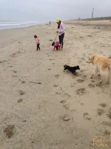 This is a beach where kids are on leashes and dogs run free. Hopefully the dogs are spayed or neutered.