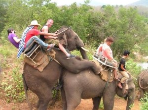 Guess this was how Dumbo was made. Bet Disney didn't show you that. Still, like how one guy seems excited about it.