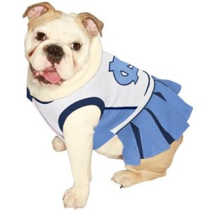 It's one thing to have a cheerleading outfit for a little girl. But one for a dog? I really don't understand.