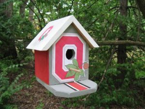 Yes, it may look like a small, wooden birdhouse. But the Ohio State logo surrounds the hole.