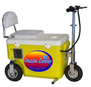 Yes, this a mix between a cooler and a tricycle. Also seems electric powered since it has an exhaust pipe.
