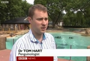 Yes, penguinologist is a real job to describe someone who studies penguins. I googled the term myself. So the term isn't a mistake by the BBC.