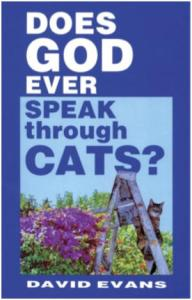 """From Mental Floss: """"This is one of those pressing questions the Bible, the Torah, and the Qu'ran all neglected to answer."""" Apparently, the ridiculous cat books seem to be endless."""