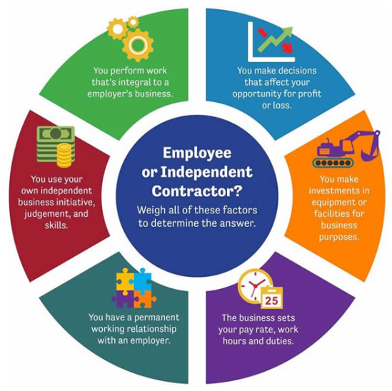 infographic_employee_contractor