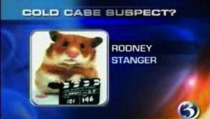 That's a hamster with a director's board. Really not someone you'd consider a cold case suspect. This is just hilarious.