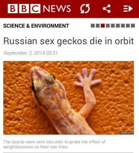 Sex geckos? You have to be serious? Russians were sending geckos to explore their sex lives in space. Yeah, that's ridiculous.