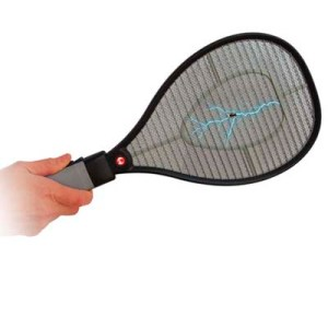 Yes, a racket that will catch those pesky summer bugs. Might make them suffer but do I give a shit about them? No.