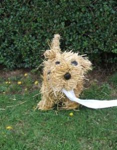 My guess is that it's a little straw terrier. Not sure what it has in its mouth which might be toilet paper.