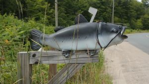 Catfishing is when you meet someone in person you met through phone, mail, or online and they don't turn out to be what they say they are. Yet, this mailbox is of a literal catfish.