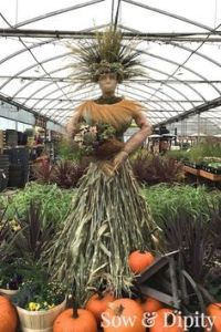 Since she has a dress made from corn stalks as well as decked in full fall regalia. Kind of wish she was in an outdoor setting though.