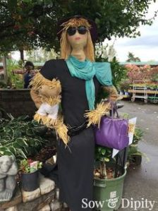 She even has her straw lapdog in a shirt that she has around her arm. Like the purple purse and turquoise scarf.