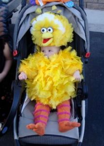Well, at least that looks more like Big Bird than a lot of costumes I've seen. Like the yellow feathers and orange leggings.