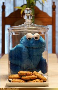 Yes, it's Cookie Monster in a jar salivating over the cookies that aren't. Just consist putting a plush Cookie in it. Easy.