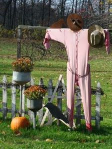 Okay, those may be pajamas and they seem to be in light pink. Not sure if that would scare the crows.