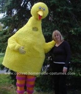 Wonder if this is the only guy Big Bird costume. Then again, you don't know who's in this thing.