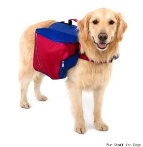 That way next time you go hiking, you can use your dog as a pack animal. So get to work, Sparky!