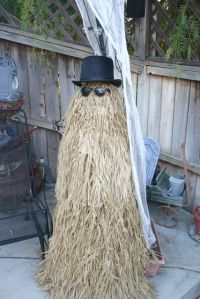That has to be a very easy scarecrow to make. I mean you just need a haystack, hat, and sunglasses.