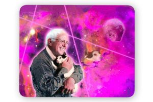 I mean Bernie holding a kitty in the galaxy? Who can resist that?