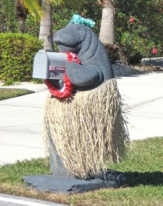 There's someone who seems to dress a manatee mailbox for holidays and special occasions. But I suppose the hula thing is the default mode.